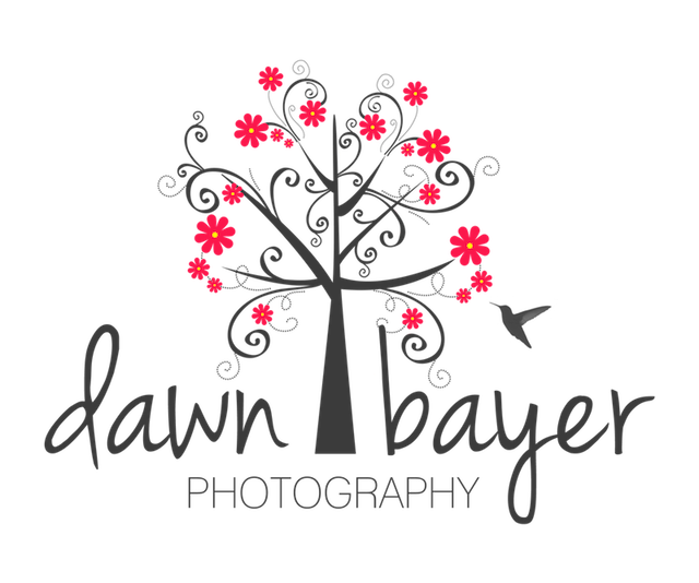 Dawn Bayer Photography Retina Logo
