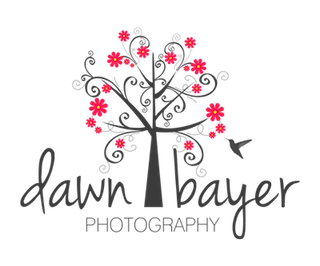 Dawn Bayer Photography Sticky Logo Retina
