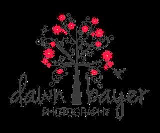 Dawn Bayer Photography Sticky Logo Retina